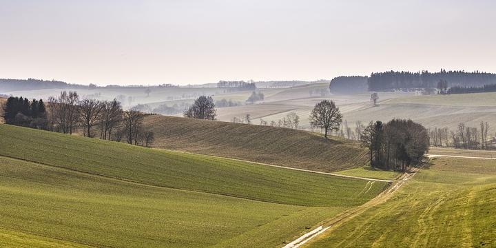 Прийняття законопроекту про передачу фермерських земель у власність фермерам посилить розвиток малого бізнесу
