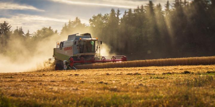 Нові прямі дотації для фермерів: як скористатися