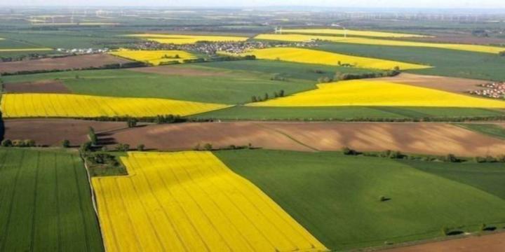 Дотації-2019: Новостворене фермерське господарство може отримати до 60 тис. грн бюджетної субсидії (інструкція з отримання коштів)